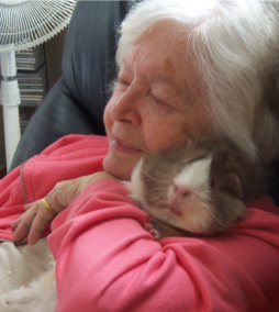Lady hugging a guinea pig