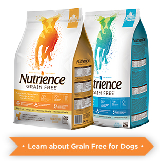 Learn more about Nutrience Grain free for dogs