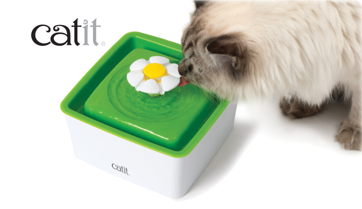 Catit 2.0 mini fountain