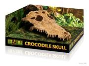 Exo Terra Crocodile Skull
