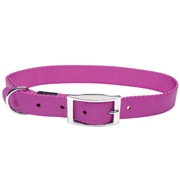 "Dogit Single Ply Nylon Dog Collar with buckle, X-Large, Purple. Size: 25mm (1"") x 56cm (22"")"