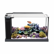 Fluval SEA EVO Aquarium Kit - 19 L (5 Gal)