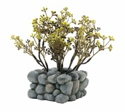 Fluval® Chi Plant with Pebble Base Ornament
