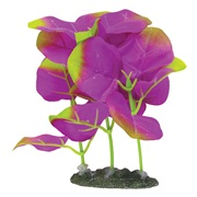 "Marina Naturals Indigo Moneywort Foreground Silk Plant - Small - 12.5 - 15 cm (5-6"")"