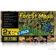 Exo Terra Forest Moss 2 x 7qt / 2 x 7L