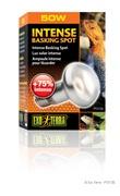 Exo Terra Intense Basking Spot - S20 / 50 W