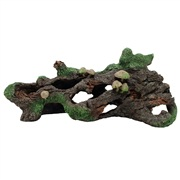 Marina Hollow Log with Moss Cover and Mushrooms