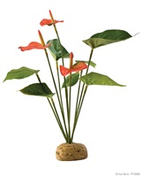 Exo Terra Rainforest Plant Anthurium Bush