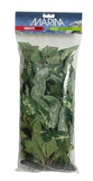 Marina Silk Plant Variety Pack