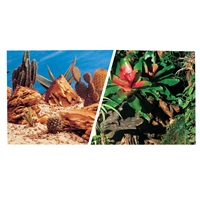 "Marina Double Sided Aquarium Background, Bromeliad/Terrarium Scenes, 30.5 cm X 7.6 m (12"" X25 ft)"