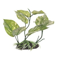 "Fluval Decorative Plant - Lizard's Tail - Medium - 17 cm (6.75"") with base"