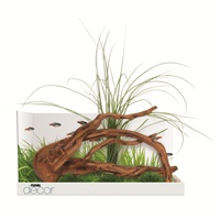 Fluval Decor, Naturalist
