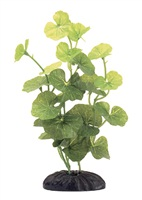 "Marina EcoScaper Hydrocotyle Leucocephala Silk Plant, 20cm (8"")"