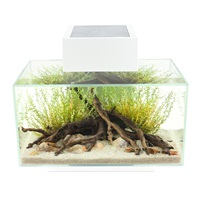 Fluval Edge 6 gal Aquarium Set - White