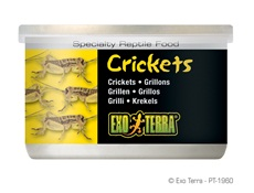 Exo Terra Crickets 34g / 1.2 oz