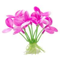 "Marina Betta Pink Orchid - 2.75"""