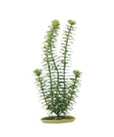 Marina Aquascaper Plastic Plant, Anacharis, 20 cm (8 in)