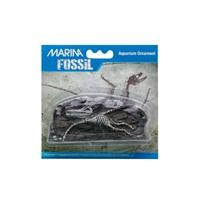 "Marina Decorative Fossils,   Pterodactyl, 5"" x 1.3"" x 2.3"""