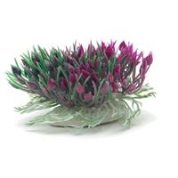 "Marina Betta Purple Hearts Shrub - 3"" (7.6 cm)"