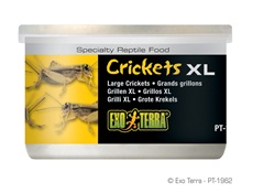 Exo Terra Crickets XL 34g 1.2 oz