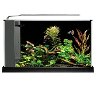 Fluval Spec Aquarium Kit - 19 L (5 US gal) - Black