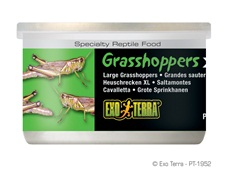 Exo Terra Canned Grasshoppers XL 34g 1.2 oz