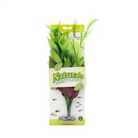 Marina Naturals Green Pickerel Silk Plant, L