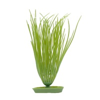 Marina Aquascaper Plastic Plant, Hairgrass, 20 cm (8 in)