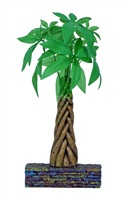 Marina 3L Betta Kit Braided Money Tree Ornament