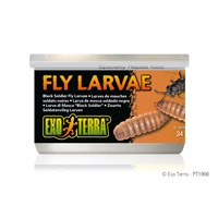 Exo Terra Canned Black Solider Fly Larvae - 34 g (1.2 oz)