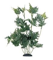 "Marina EcoScaper Hygrophila Difformis Silk Plant, 30cm (12"")"