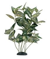 """Marina EcoScaper Houtuynia Cordata Silk Plant, 30cm (12"""")"""