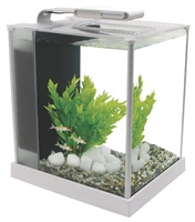 Fluval Spec 10 L (2.6 US Gal) - White
