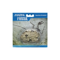 "Marina Decorative Fossils,   Footprints, 3.7"" x 1.5"" x 2.3"""