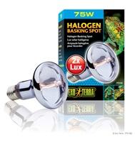 Exo Terra Halogen Basking Spot - 75W