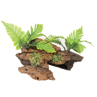 Marina Naturals Malaysian Decorative Driftwood with Plants, Medium
