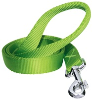 Dogit Single Ply Nylon Training Dog Leash - Green - Large (1.8 m/6 ft)