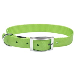"Dogit Single Ply Nylon Dog Collar with Buckle- Green, XLarge (65cm/26"")"