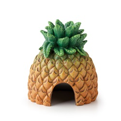 Exo Terra Pineapple Hide
