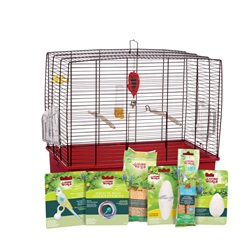 Living World has a starter kit for your new small bird