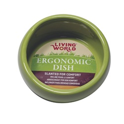 Living World Ergonomic Dish Large, 420 mL (14.78 oz)Green/Ceramic