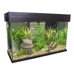 Fluval Accent Aquarium - Espresso - 95 L (25 US Gal.)