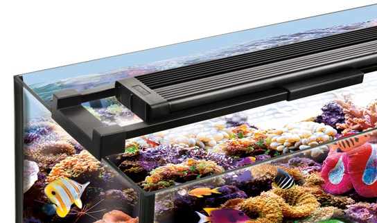 Introducing new fluval sea marine reef led lighting available as either an led strip or led nano light with switchable day and night modes your livestock will look fantastic at any time day or night aloadofball Image collections