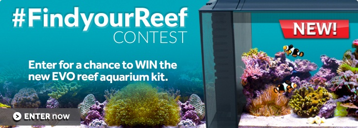 Fluval - Find your Reef Contest