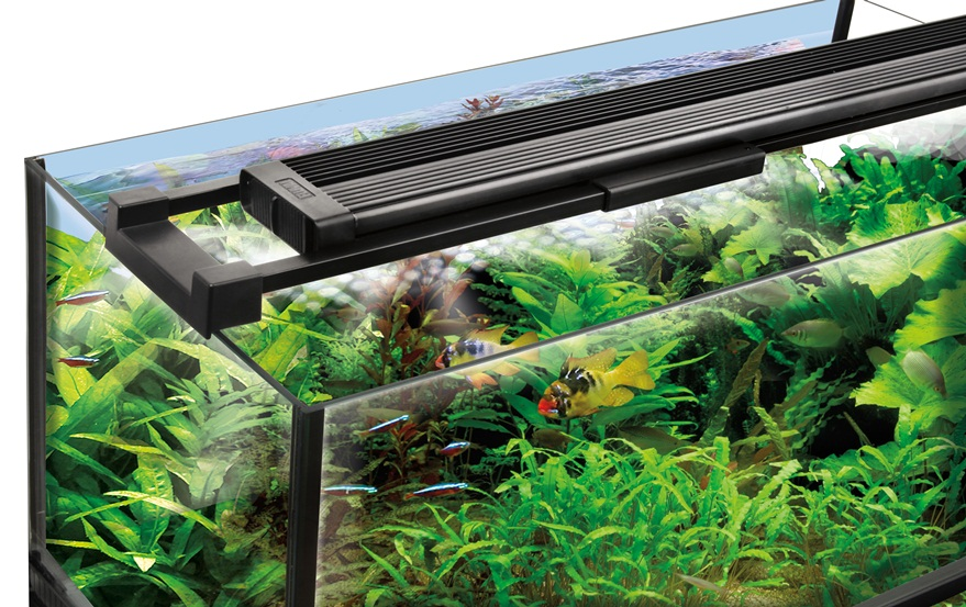 Introducing New Fluval Sea Marine Reef Led Lighting