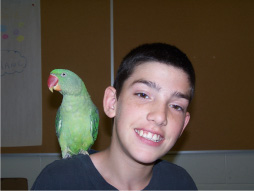 Boy smiling with a parrot