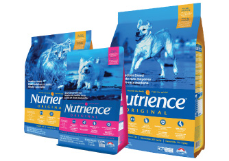 Nutrience Original