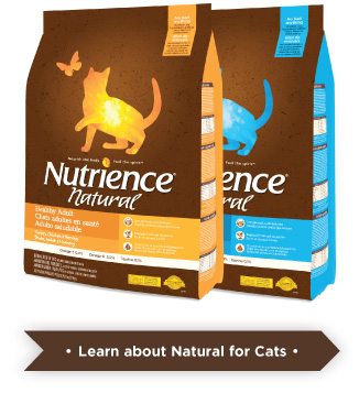 Learn more about Natural for cats