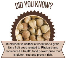 Did you know? - Buckwheat is not a wheat nor a grain. It's a fruit seed related to Rhubarb and considered a health food powerhouse that is gluten-free and protein-rich.